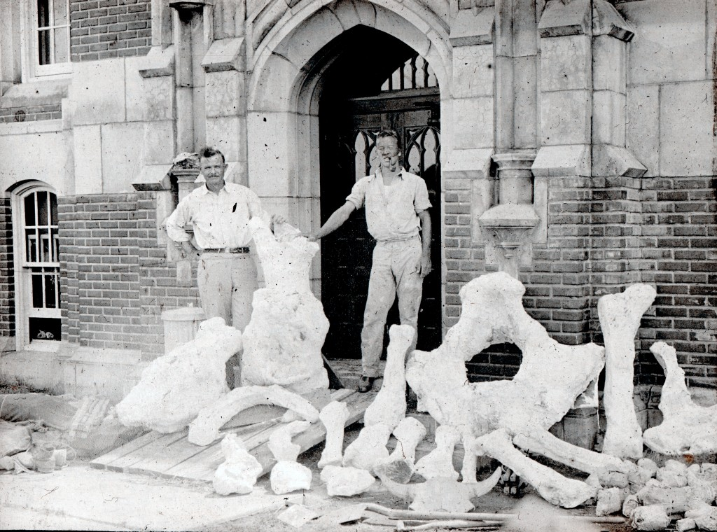 Bones in front of geology building