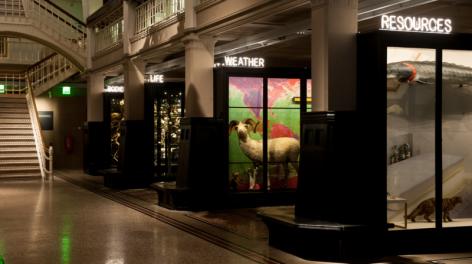 Modern exhibits