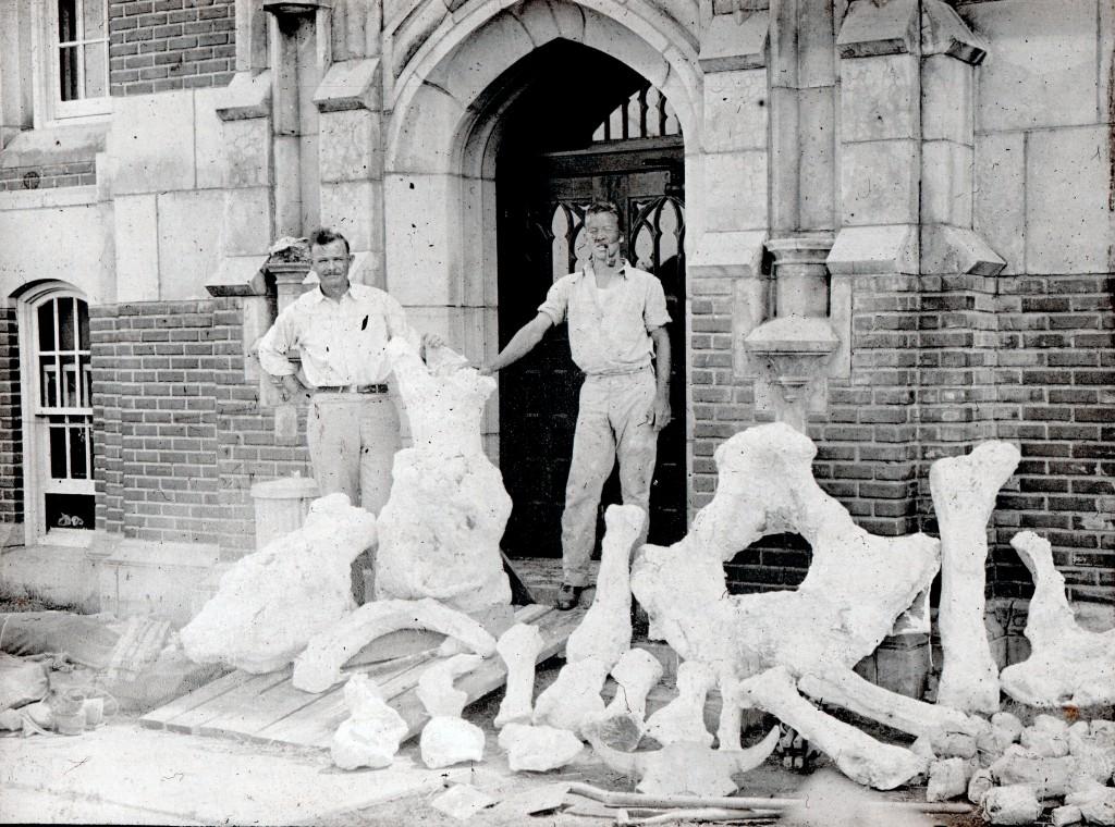 Bones in front of geology building