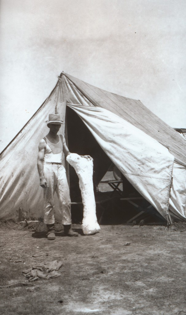 Jacketed femur in front of tent