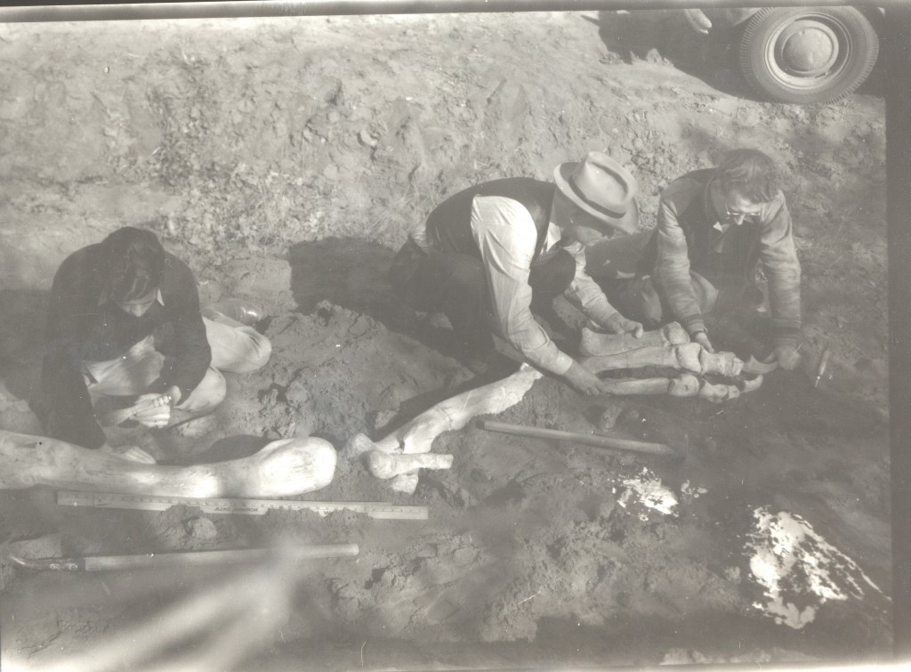 Stovall with leg in situ 2