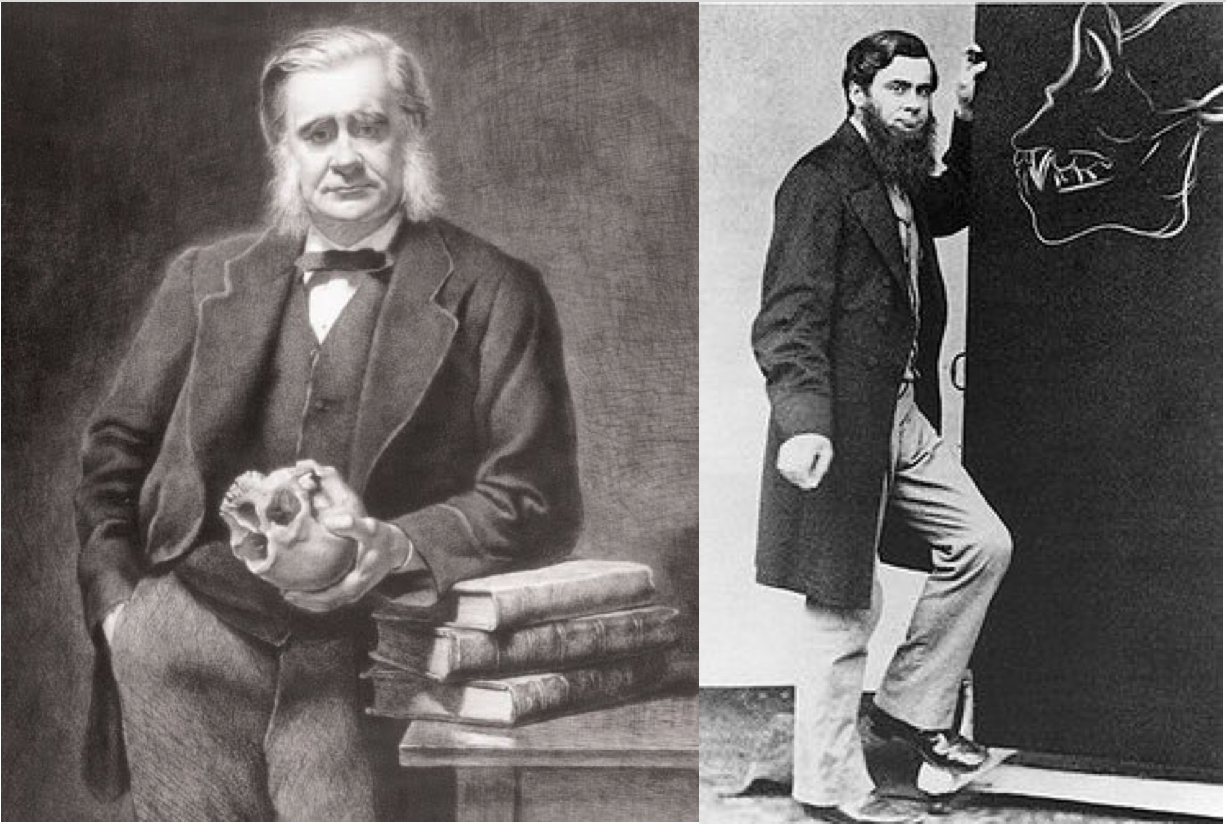 Huxley portait with skull, and young Huxley with ape skull drawing